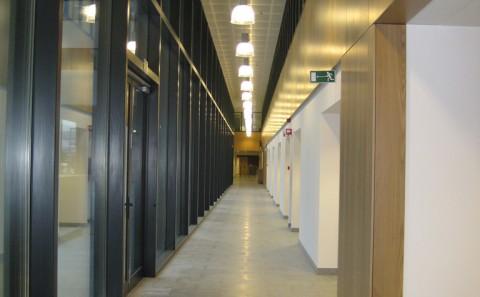 Attis VAC Leuven